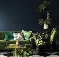 Интерьер с зеленой стеной