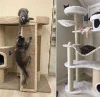 Дом для кошки из дерева