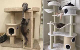 Домик для кошки из дерева фото